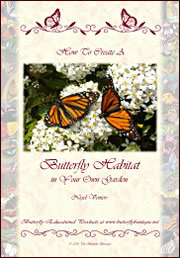 How to Create a Butterfly Habitat - cover