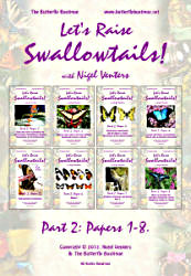 Let's Raise Swallowtails! (Part Two)
