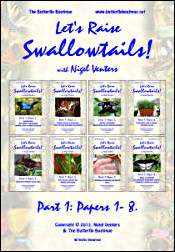 Let's Raise Swallowtails! (Part One)